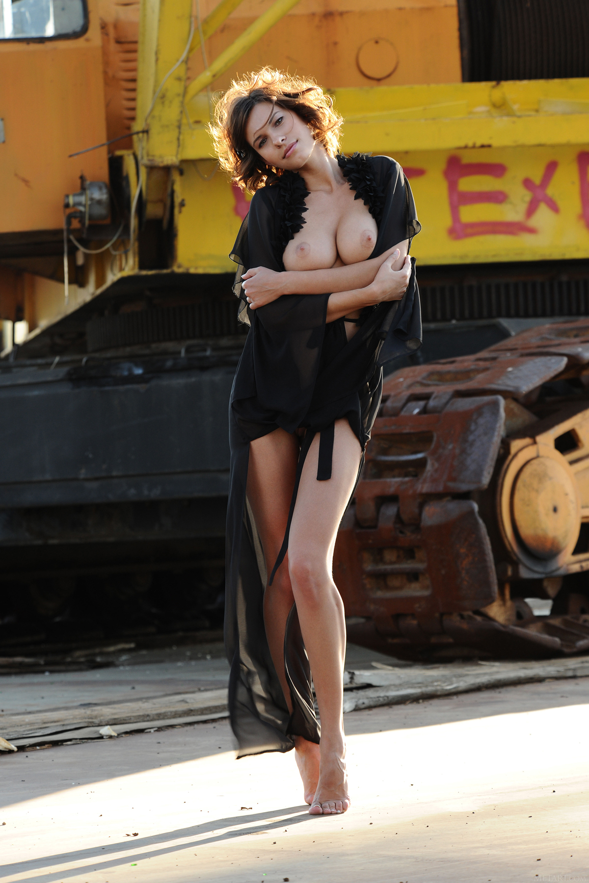 PHOTO | 00 231 - Beautiful Suzanna A - Crawler Crane