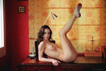 PHOTO   12 152 366x244 - Socks