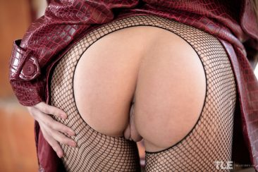 PHOTO | 06 42 366x244 - Charming Veronica Clark In Fishnet On Nude Body
