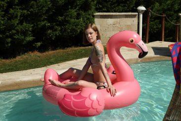 PHOTO | 01 175 366x244 - Poolside Peepshow