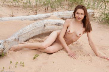 PHOTO   07 1 366x244 - Beach Day